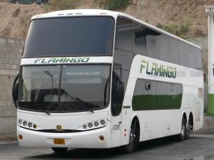 Ejemplo de foto con calidad optima de la empresa Expresos Flamingo.