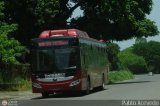 Bus Guarico