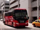 Red Coach 2704, por Pablo Acevedo