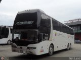 Expresos Flamingo 0006, por Bus Land
