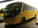 Caribe Tours 991